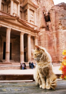 November 2016 - Forbidden City, Petra, Isreal